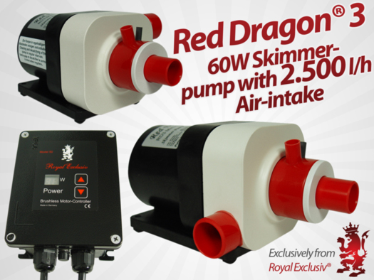 Red Dragon 3 with 60W Royal Exclusiv