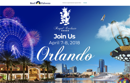 Royal Exclusiv USA Reef  a palooza Orlando 2018